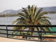 Odmor ispod palme