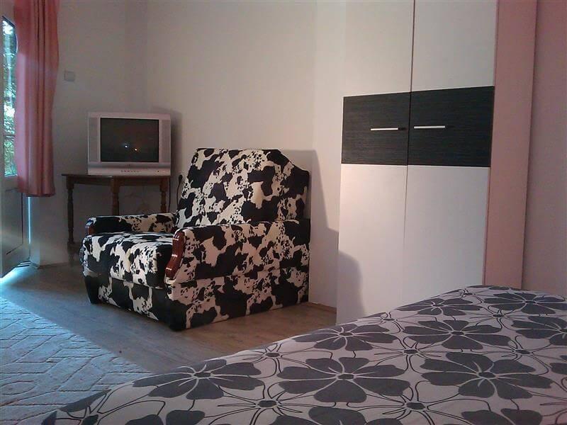 Apartmani Nebojša - SOKOBANJA